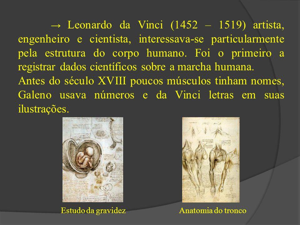 → Leonardo da Vinci (1452 – 1519) artista, engenheiro e cientista, interessava-se particularmente pela estrutura do corpo humano. Foi o primeiro a registrar dados científicos sobre a marcha humana.