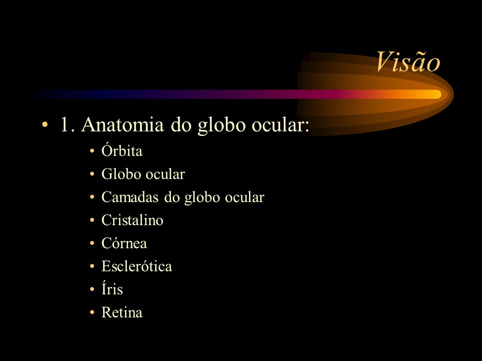 Visão 1. Anatomia do globo ocular: Órbita Globo ocular