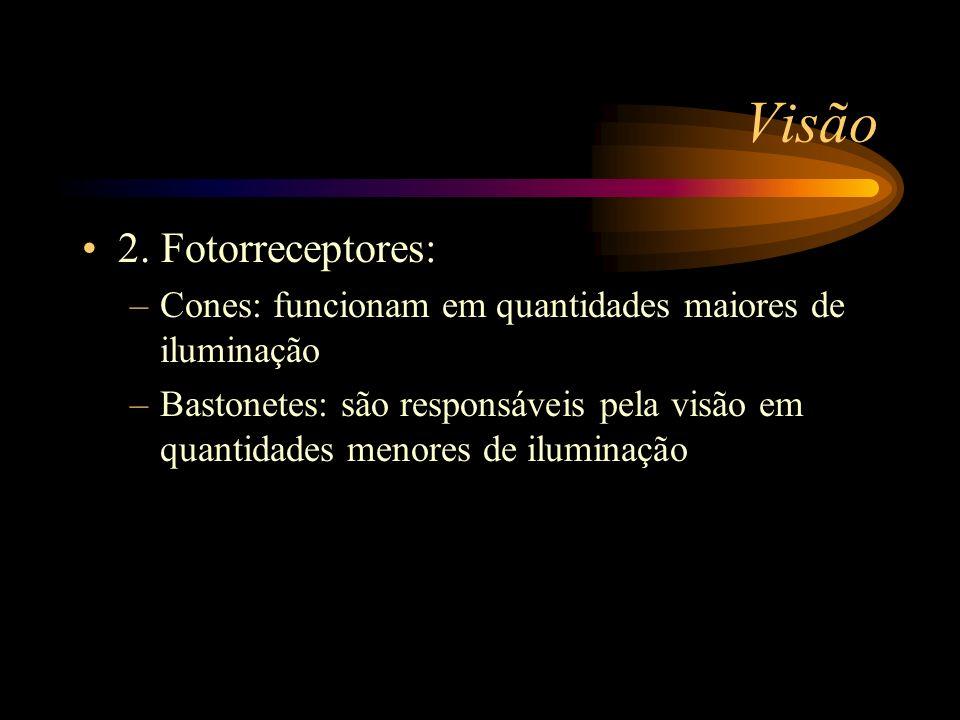 Visão 2. Fotorreceptores: