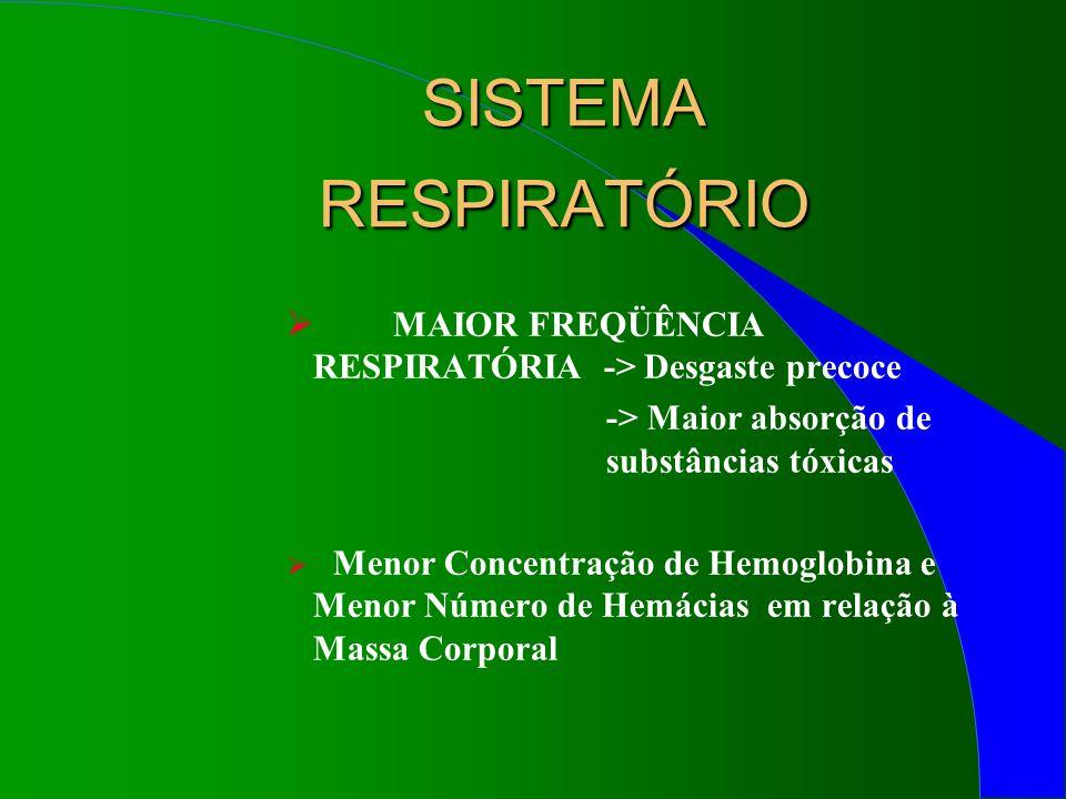 SISTEMA RESPIRATÓRIO MAIOR FREQÜÊNCIA RESPIRATÓRIA -> Desgaste precoce. -> Maior absorção de substâncias tóxicas.