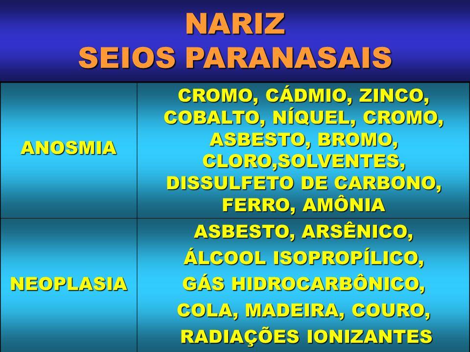 NARIZ SEIOS PARANASAIS