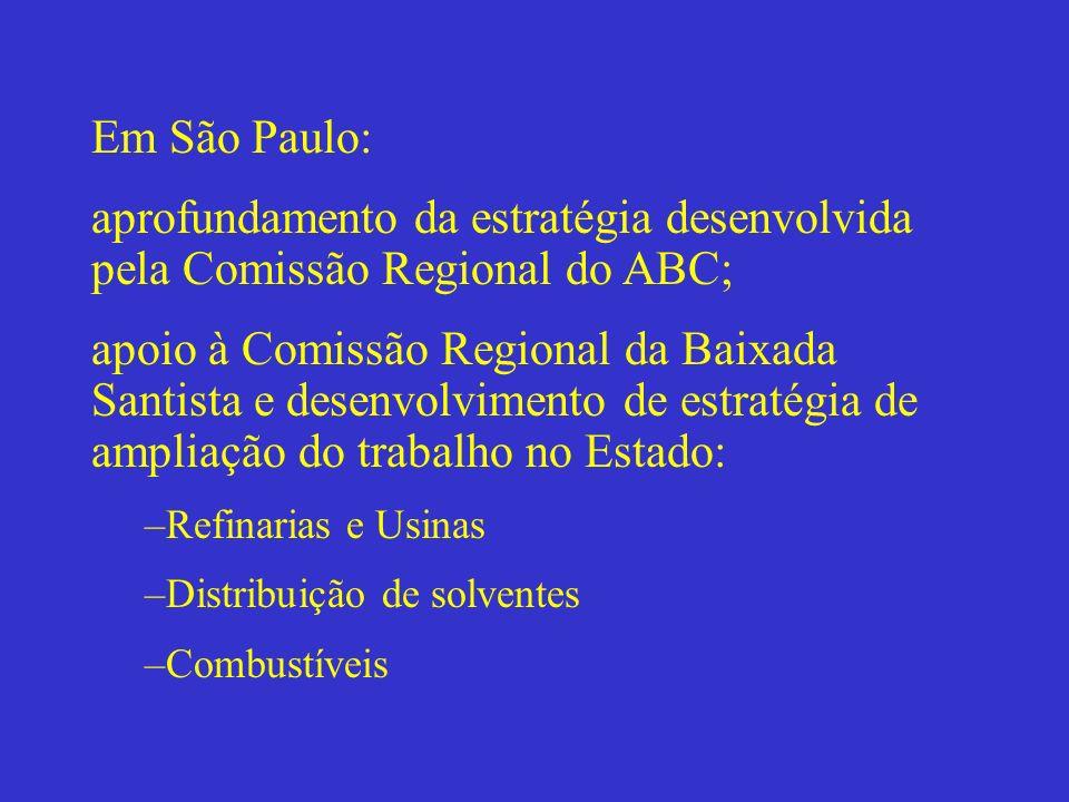 Em São Paulo: aprofundamento da estratégia desenvolvida pela Comissão Regional do ABC;