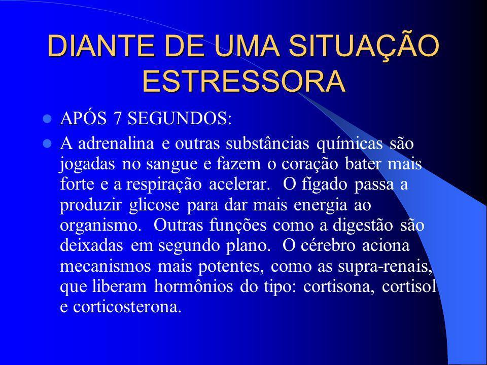 DIANTE DE UMA SITUAÇÃO ESTRESSORA