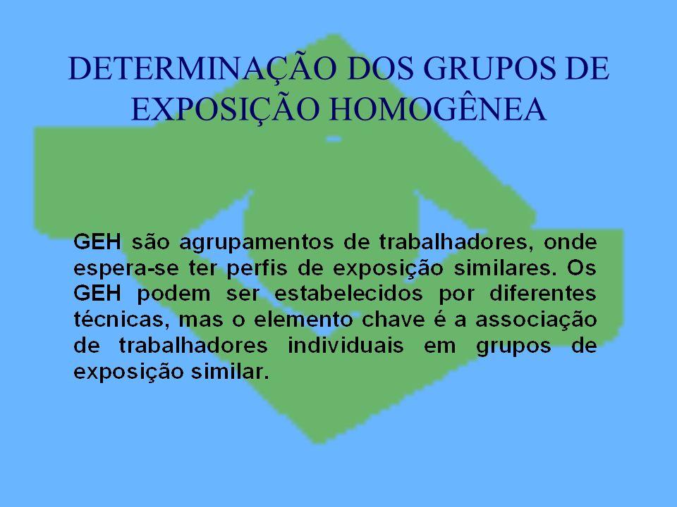 DETERMINAÇÃO DOS GRUPOS DE EXPOSIÇÃO HOMOGÊNEA