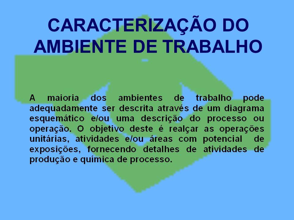 CARACTERIZAÇÃO DO AMBIENTE DE TRABALHO
