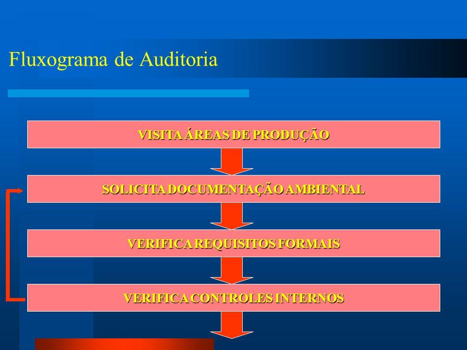 Fluxograma de Auditoria