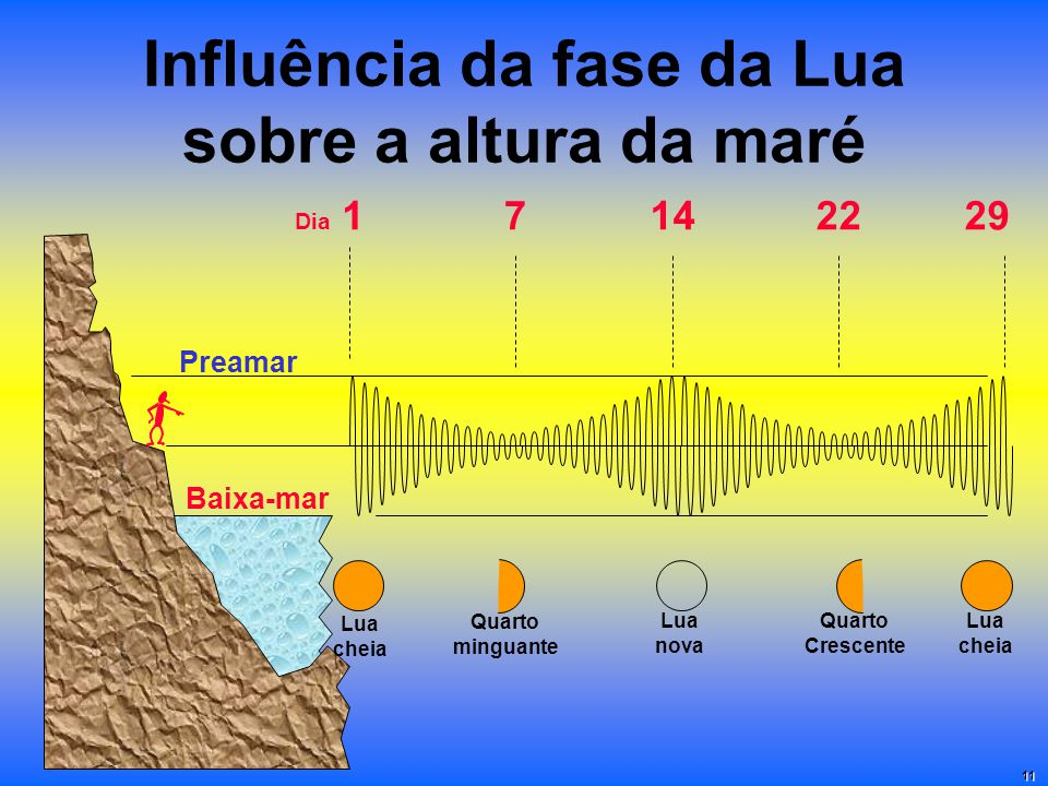 Influência da fase da Lua sobre a altura da maré