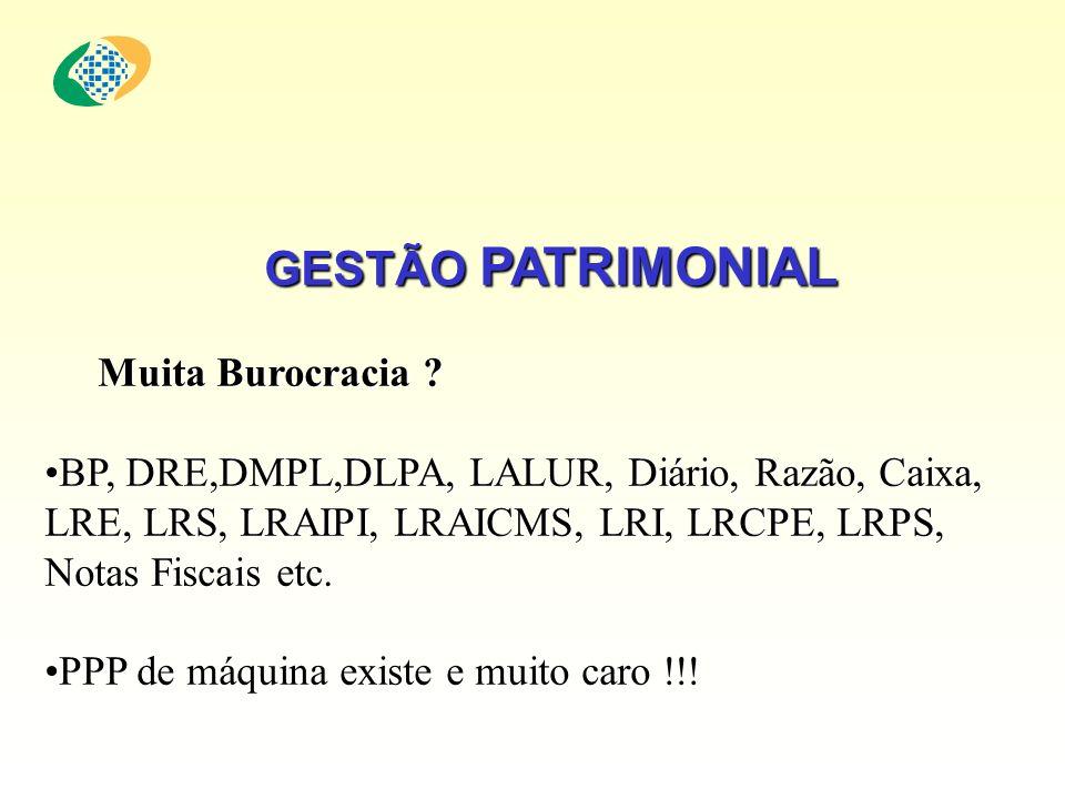 GESTÃO PATRIMONIAL Muita Burocracia