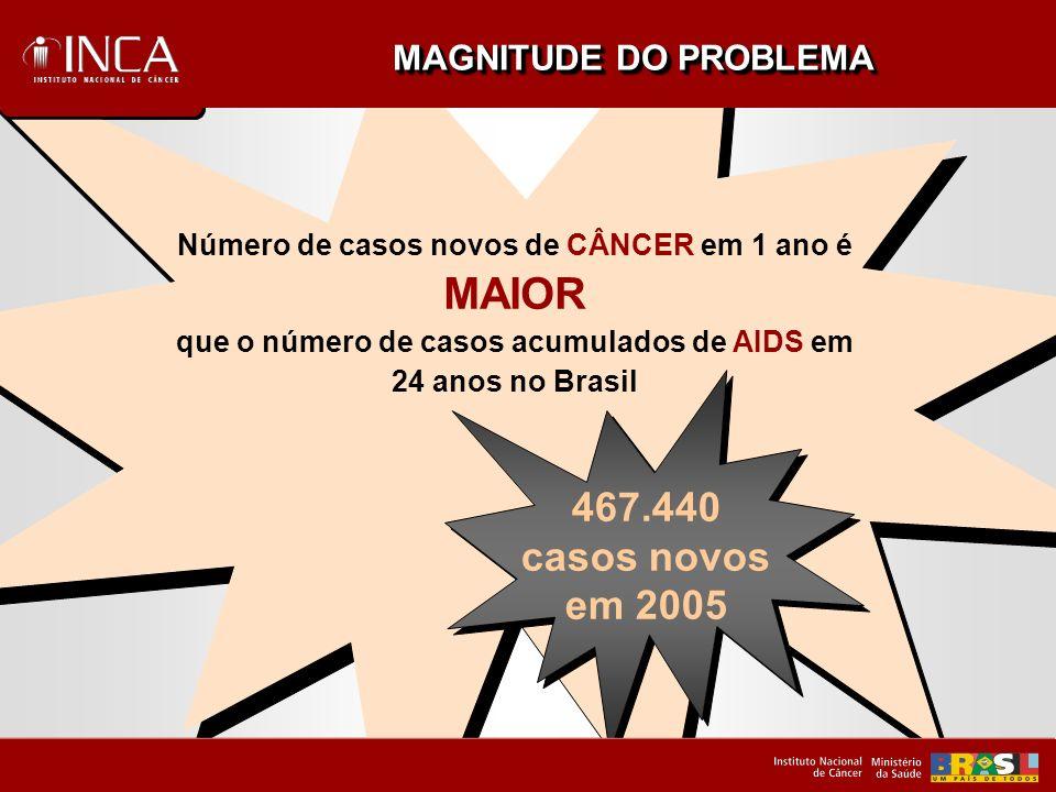 MAIOR 467.440 casos novos em 2005 MAGNITUDE DO PROBLEMA