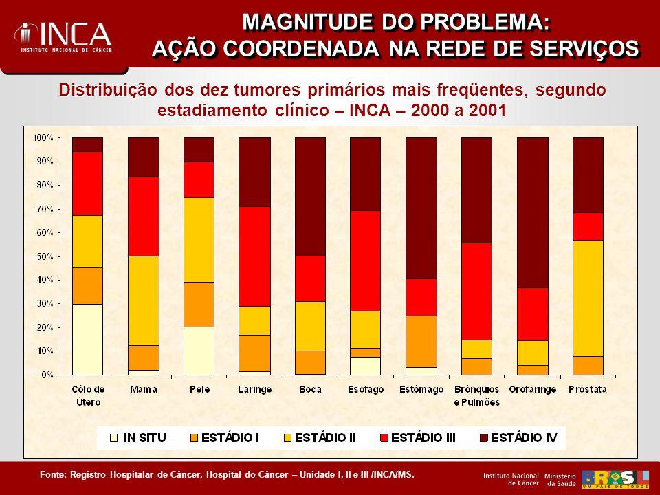 MAGNITUDE DO PROBLEMA: AÇÃO COORDENADA NA REDE DE SERVIÇOS