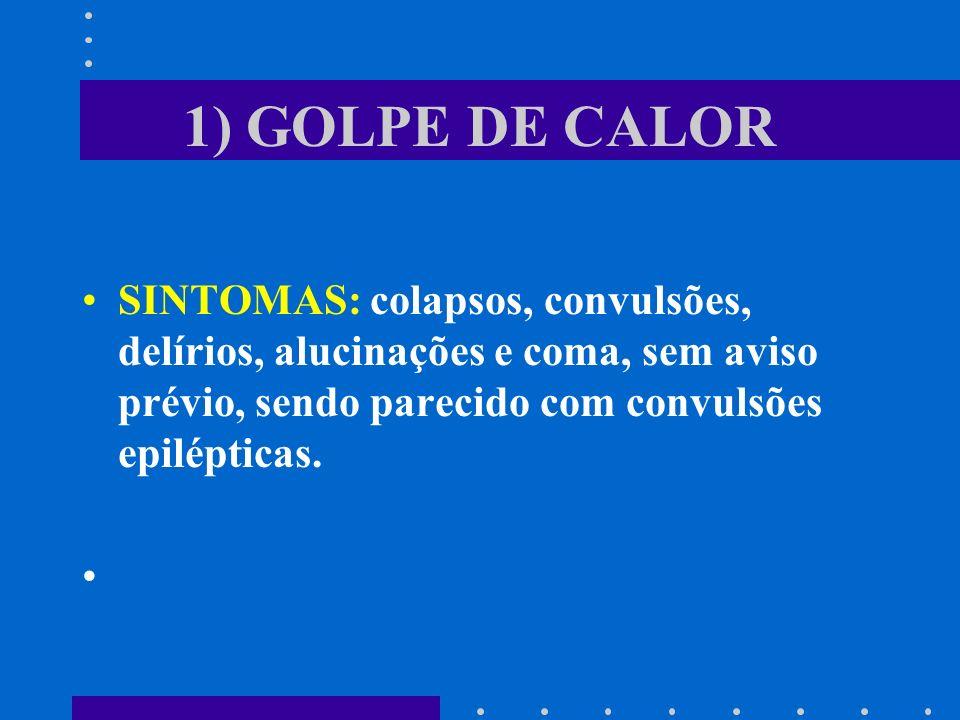 1) GOLPE DE CALORSINTOMAS: colapsos, convulsões, delírios, alucinações e coma, sem aviso prévio, sendo parecido com convulsões epilépticas.