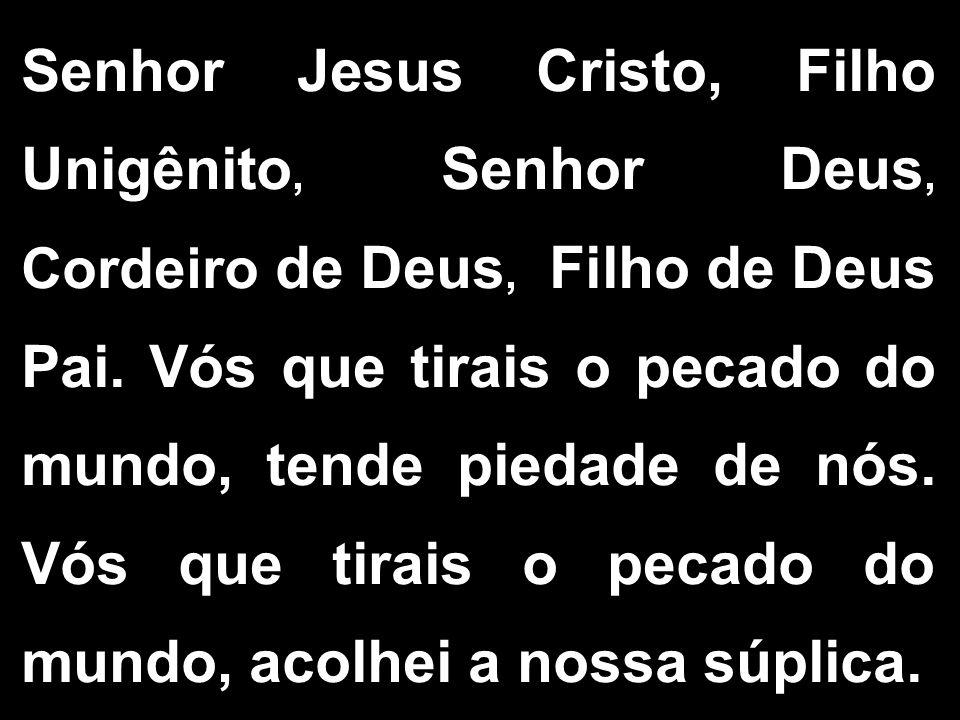 Senhor Jesus Cristo, Filho Unigênito, Senhor Deus, Cordeiro de Deus, Filho de Deus Pai.