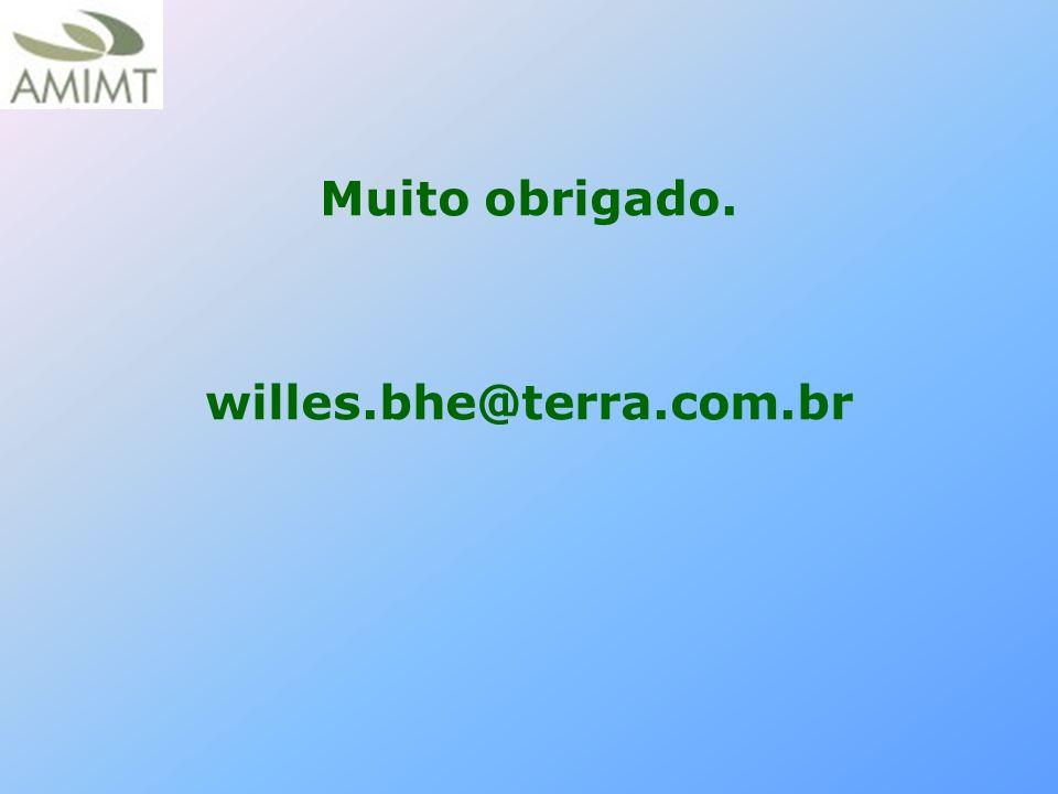 Muito obrigado. willes.bhe@terra.com.br