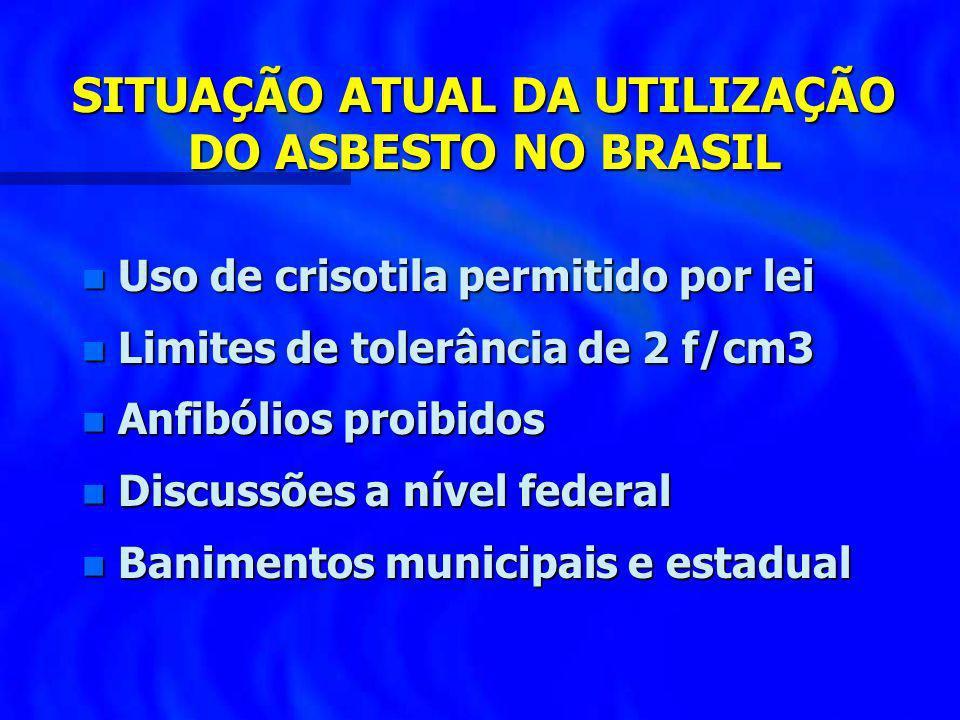 SITUAÇÃO ATUAL DA UTILIZAÇÃO DO ASBESTO NO BRASIL