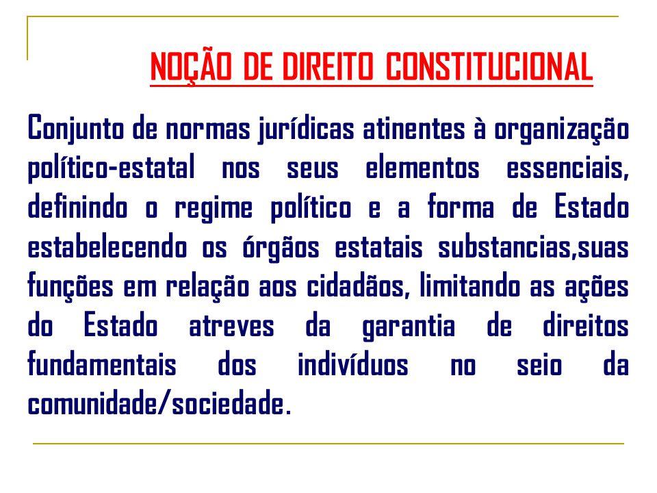 NOÇÃO DE DIREITO CONSTITUCIONAL