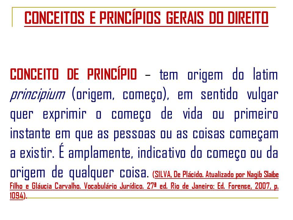 CONCEITOS E PRINCÍPIOS GERAIS DO DIREITO