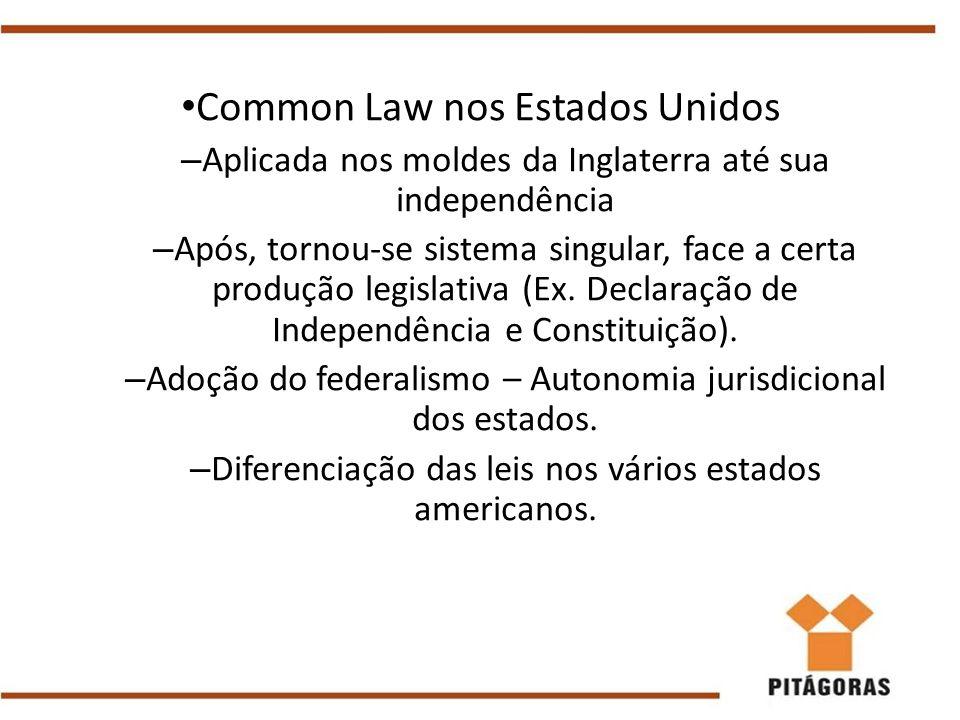 Common Law nos Estados Unidos