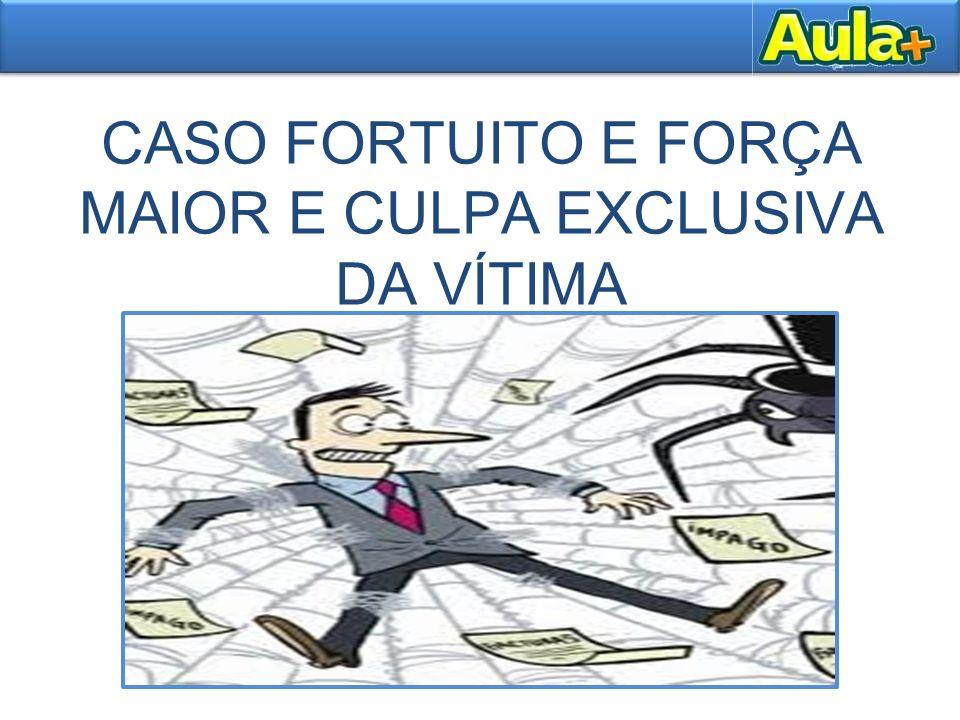 CASO FORTUITO E FORÇA MAIOR E CULPA EXCLUSIVA DA VÍTIMA