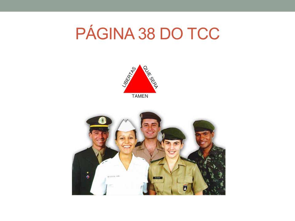 PÁGINA 38 DO TCC