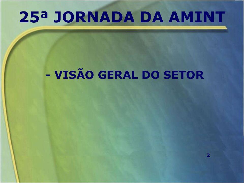 25ª JORNADA DA AMINT - VISÃO GERAL DO SETOR 2