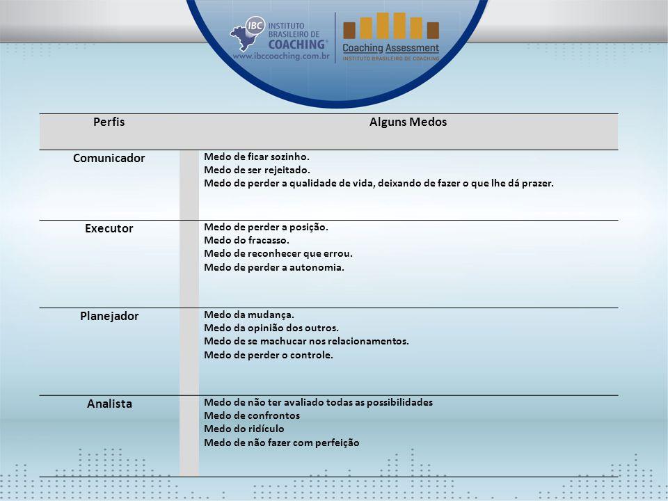 Perfis Alguns Medos Comunicador Executor Planejador Analista