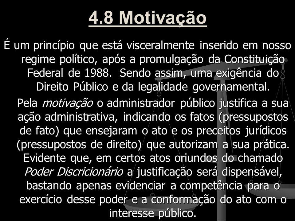 4.8 Motivação