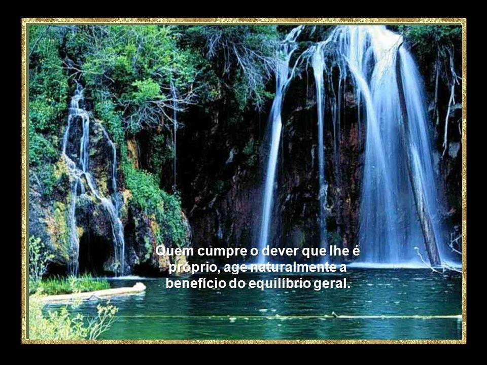 Quem cumpre o dever que lhe é próprio, age naturalmente a benefício do equilíbrio geral.
