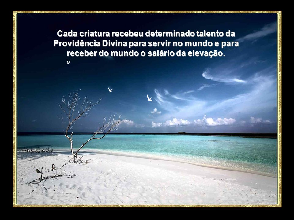 Cada criatura recebeu determinado talento da Providência Divina para servir no mundo e para receber do mundo o salário da elevação.