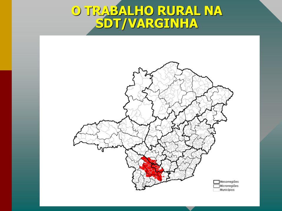 O TRABALHO RURAL NA SDT/VARGINHA