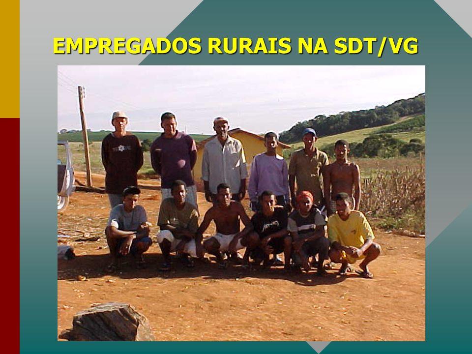 EMPREGADOS RURAIS NA SDT/VG