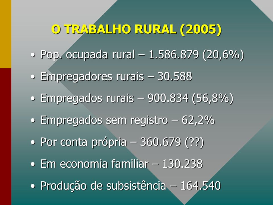 O TRABALHO RURAL (2005) Pop. ocupada rural – 1.586.879 (20,6%)