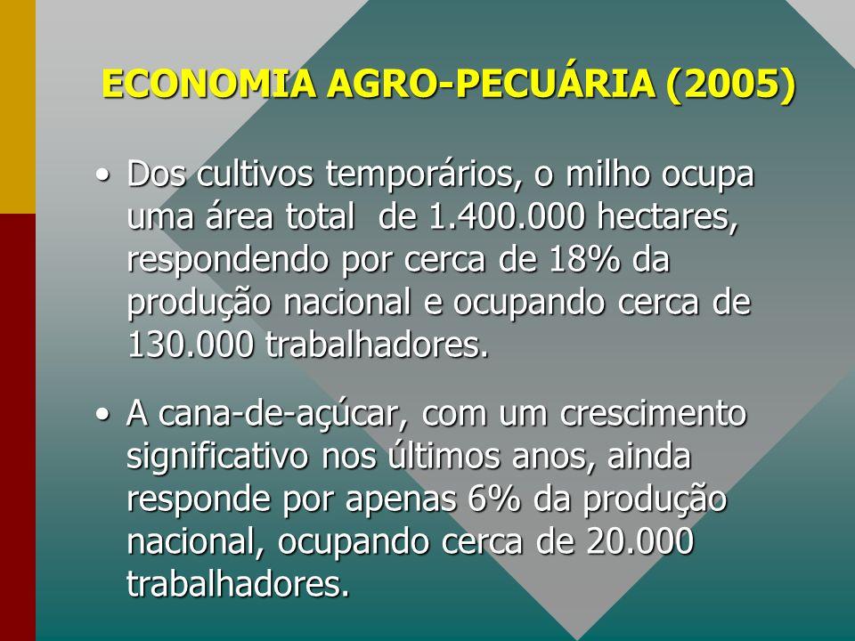 ECONOMIA AGRO-PECUÁRIA (2005)