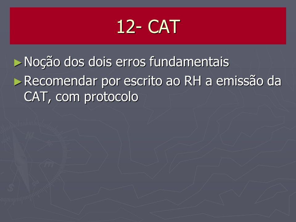 12- CAT Noção dos dois erros fundamentais
