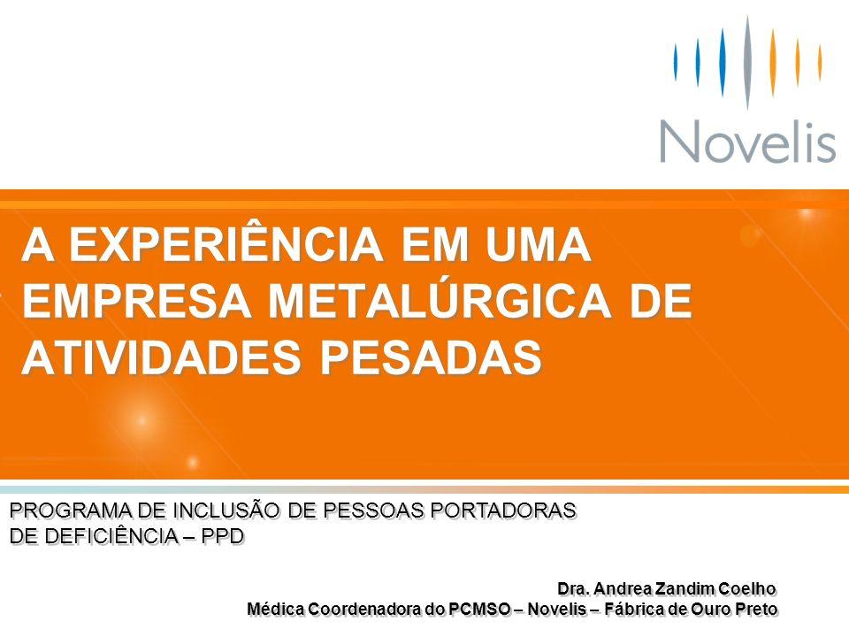 A EXPERIÊNCIA EM UMA EMPRESA METALÚRGICA DE ATIVIDADES PESADAS