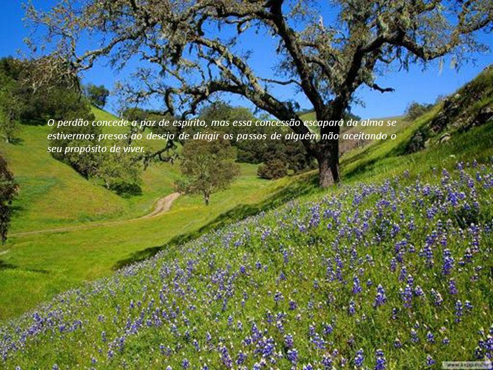 O perdão concede a paz de espírito, mas essa concessão escapará da alma se estivermos presos ao desejo de dirigir os passos de alguém não aceitando o seu propósito de viver.