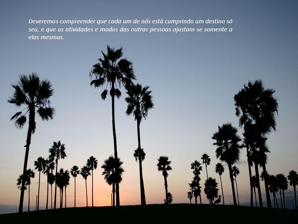 Deveremos compreender que cada um de nós está cumprindo um destino só seu, e que as atividades e modos das outras pessoas ajustam-se somente a elas mesmas.