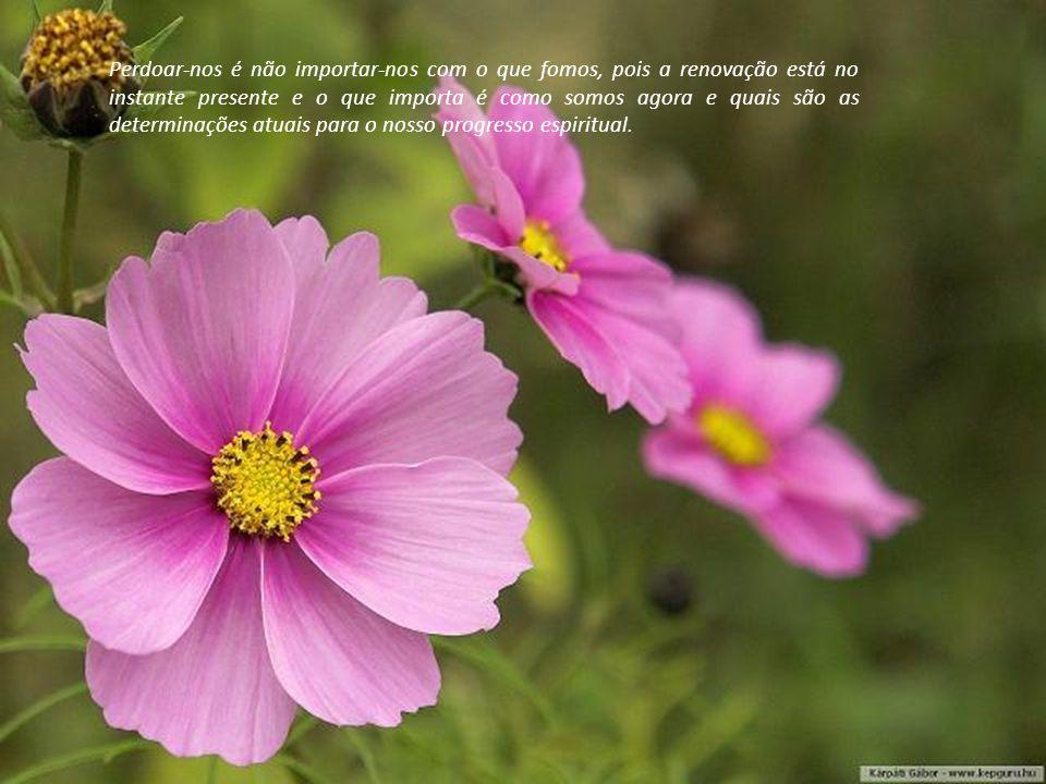 Perdoar-nos é não importar-nos com o que fomos, pois a renovação está no instante presente e o que importa é como somos agora e quais são as determinações atuais para o nosso progresso espiritual.