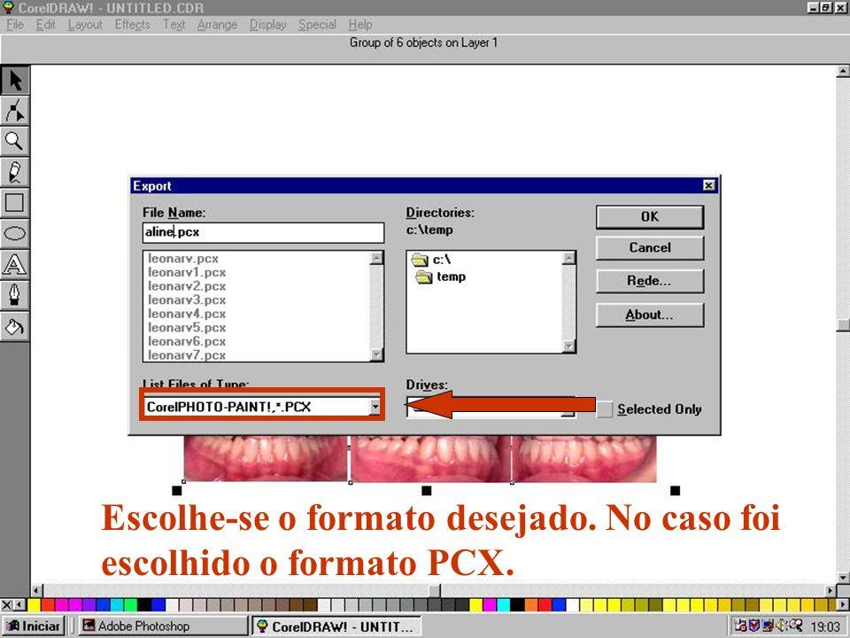 Escolhe-se o formato desejado. No caso foi escolhido o formato PCX.