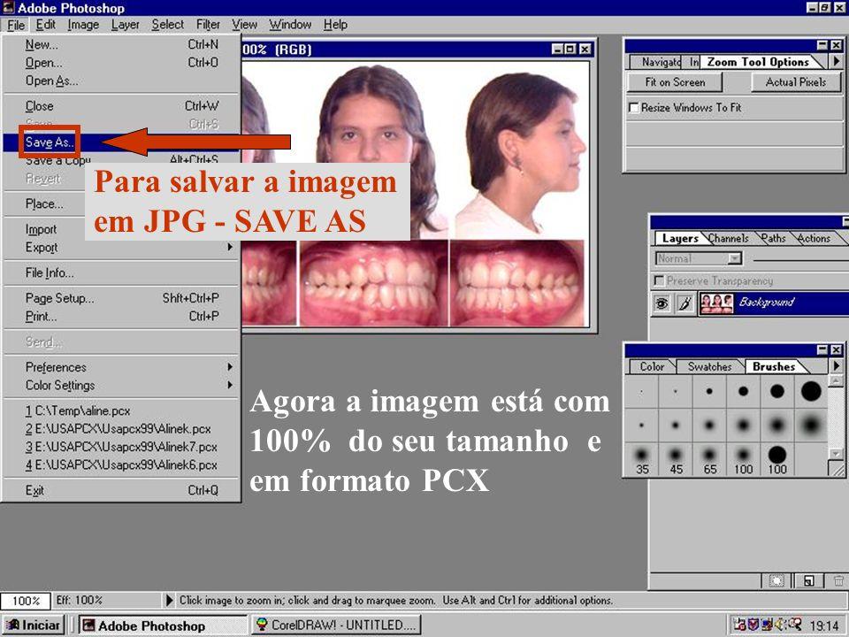 Para salvar a imagem em JPG - SAVE AS. Agora a imagem está com.