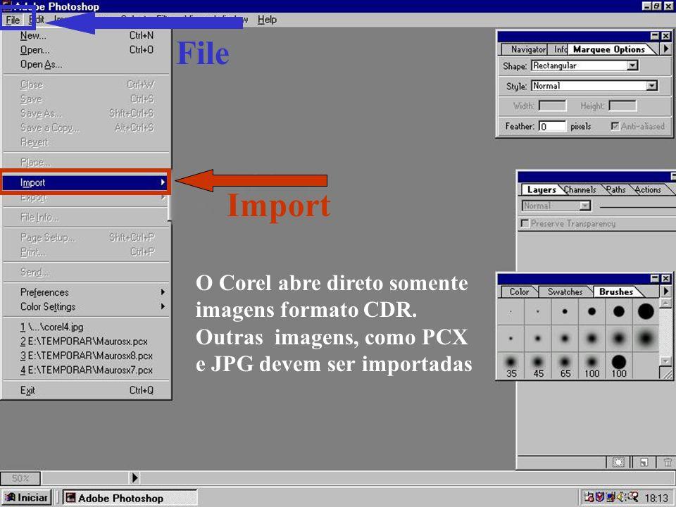 File Import O Corel abre direto somente imagens formato CDR.