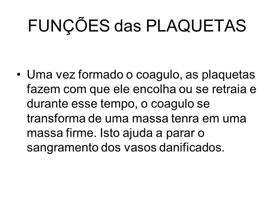 FUNÇÕES das PLAQUETAS