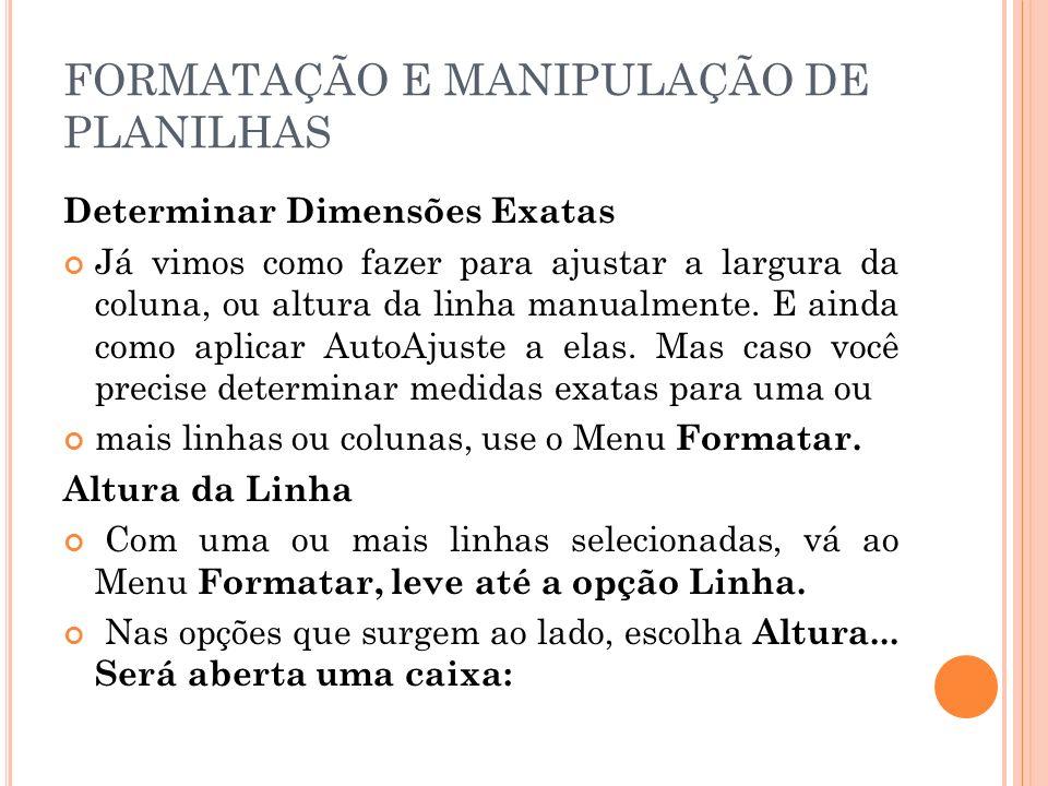 FORMATAÇÃO E MANIPULAÇÃO DE PLANILHAS