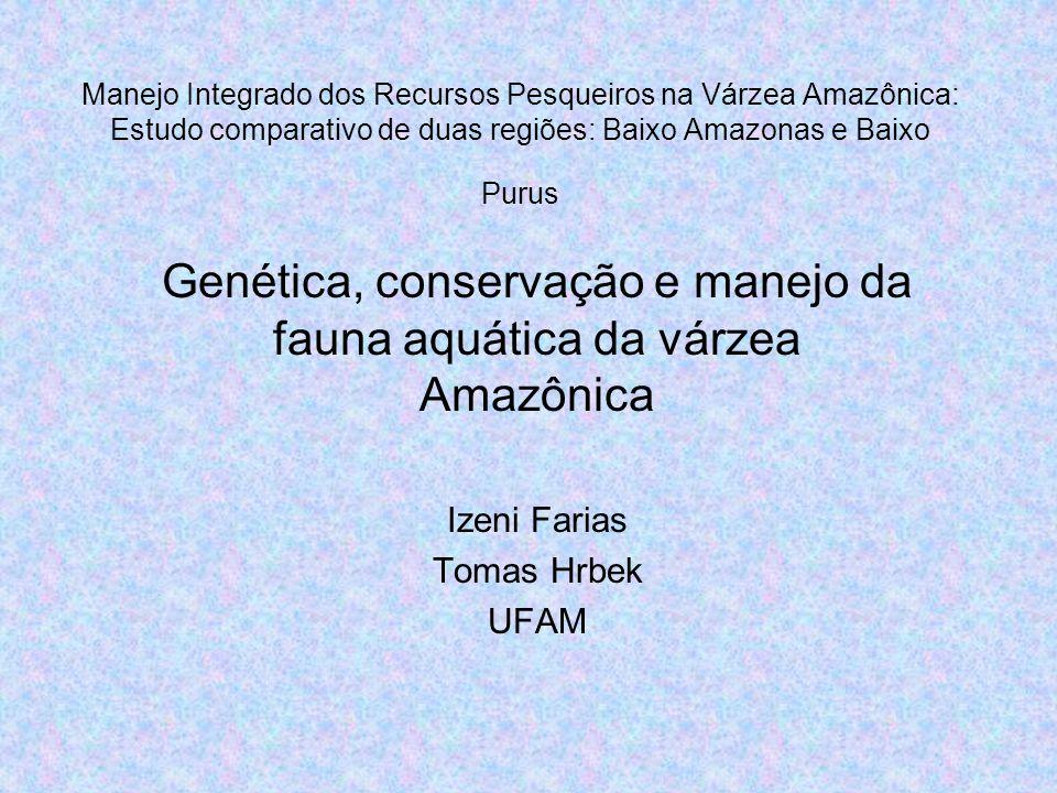 Genética, conservação e manejo da fauna aquática da várzea Amazônica