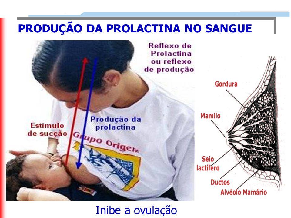 PRODUÇÃO DA PROLACTINA NO SANGUE