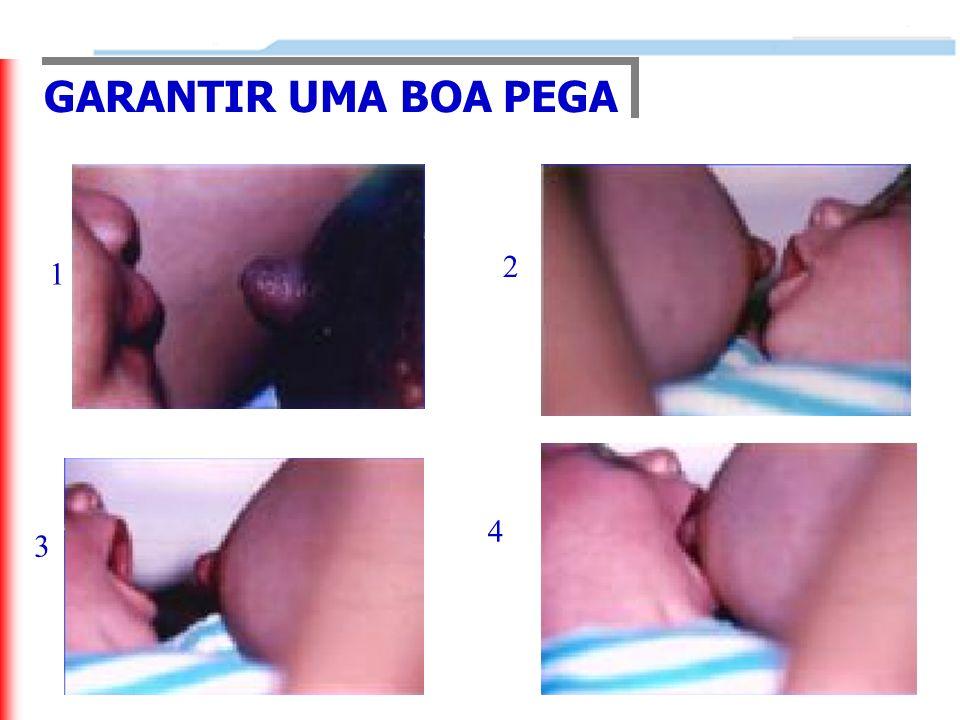 GARANTIR UMA BOA PEGA 2 1 4 3