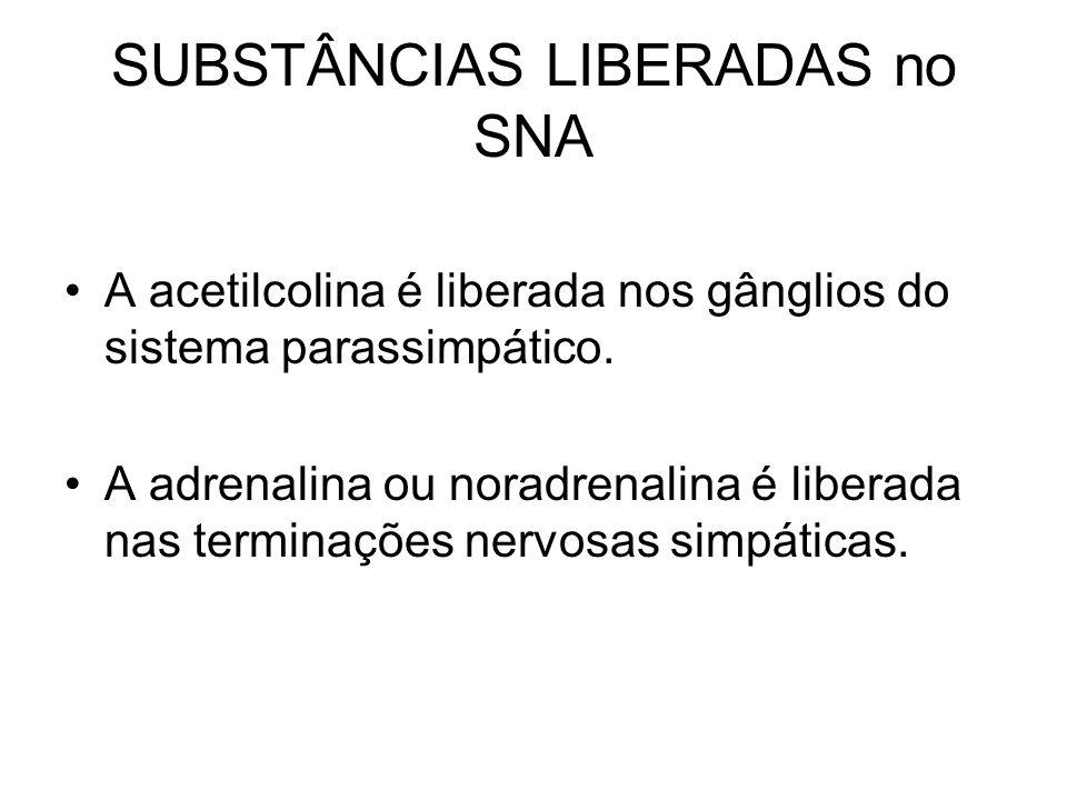 SUBSTÂNCIAS LIBERADAS no SNA