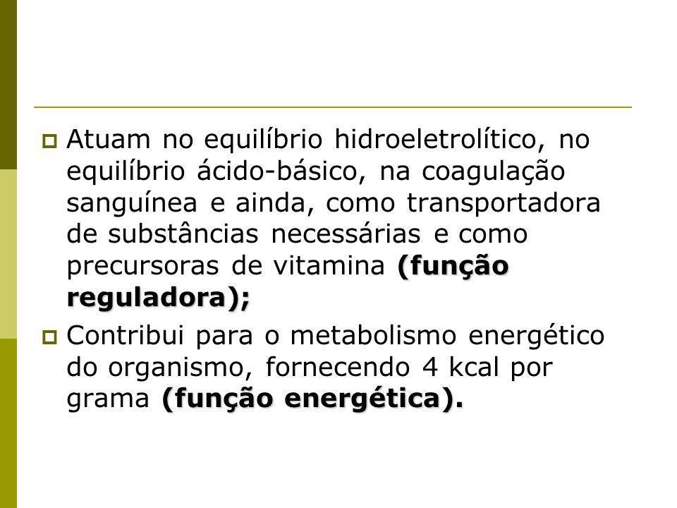 Atuam no equilíbrio hidroeletrolítico, no equilíbrio ácido-básico, na coagulação sanguínea e ainda, como transportadora de substâncias necessárias e como precursoras de vitamina (função reguladora);