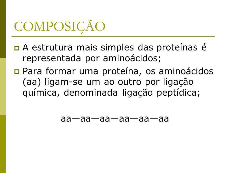 COMPOSIÇÃO A estrutura mais simples das proteínas é representada por aminoácidos;