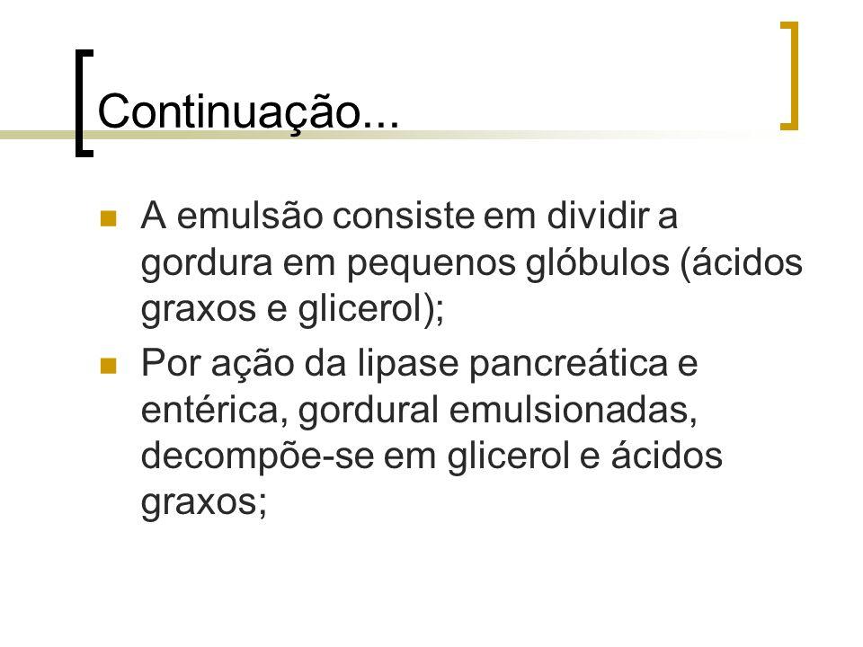 Continuação...A emulsão consiste em dividir a gordura em pequenos glóbulos (ácidos graxos e glicerol);