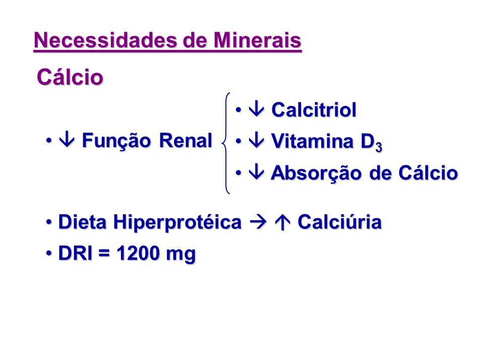 Cálcio Necessidades de Minerais  Calcitriol  Vitamina D3